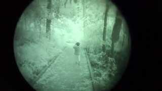 L3 Chrome Gen 3 Filmless Autogated White Phosphor Tube - Night Vision Hike