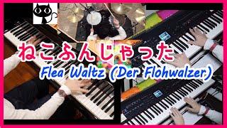 ねこふんじゃった /6手連弾/本気のピアノ高速アレンジ【ドラムも僕】Flea Waltz (Der Flohwalzer) Piano & Drum シャーベットクロック薬剤師ユーチューバー
