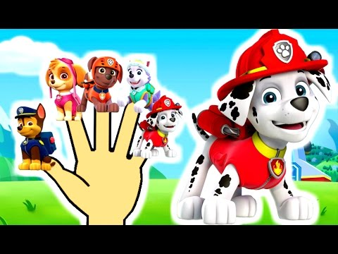 Finger Family Collection Paw Patrol | Top 10 Finger Family Songs | Finger Family Song Peppa pig