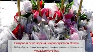 Свадьба Степногорск п Заводской Нурсултан Айсулу