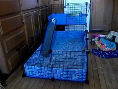How to clean a guinea pig c c cage with fleece youtube for How to clean guinea pig cages