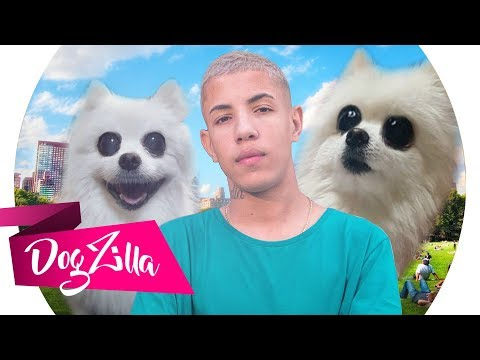 AMAR, AMEI EM CACHORRÊS! - MC Don Juan (DogZilla)