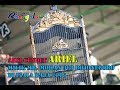 Piala Raja  Aksi Cendet Ariel Milik Mr Mohan  Bojonegoro  Mp3 - Mp4 Download