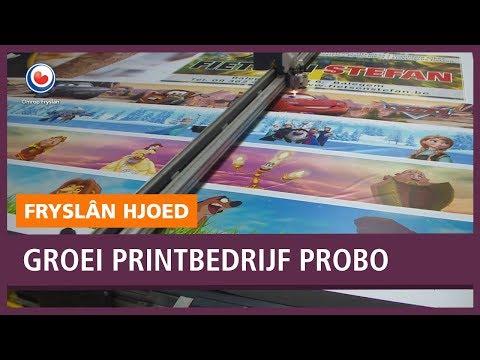 REPO: Hoe laat je een bedrijf groeien? Printbedrijf Probo in Dokkum laat het zien.