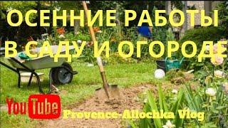 Франция/Осенние работы в саду и огороде/Страсти вокруг семейной оливковой рощи