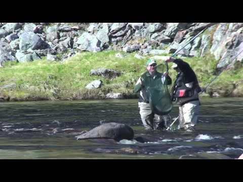Kharlovka, Litza & Rynda-Salmon Fishing on the Kola Peninsula