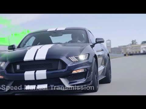 2019 Ford Shelby GT350 Wild Car! 526 HP