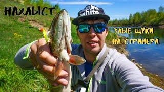Рыбалка 2020 Злые Щуки на Муху