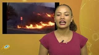 Het 10 Minuten Jeugd Journaal (Suriname / South-America)