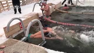 Чемпионат Свердловской области по зимнему плаванию
