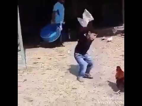 video dahk