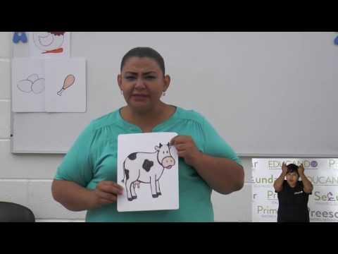 Preescolar clase: 31 Tema: Alimentos de origen animal