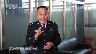 《生活提示》 20200123 开车遇动物 司机怎么做?| CCTV