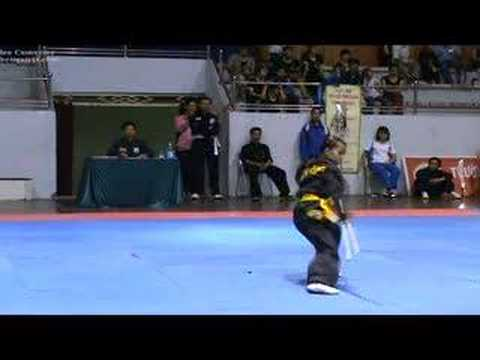 Thai Son Con - Young - Vietnam Traditional Martial Arts
