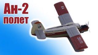 видео: Большой Ан-2 увидел небо | ALNADO