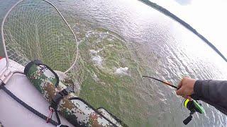ЩУКА КРОКОДИЛ КЛЮНУЛА НА КРОКОДИЛА! Рыбалка на спиннинг! Ловля щуки, Судака, Окуня на сломе погоды