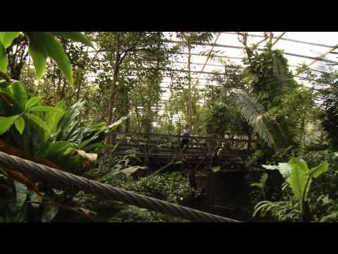 Die Region Veluwe - ein Paradies für Naturliebhaber