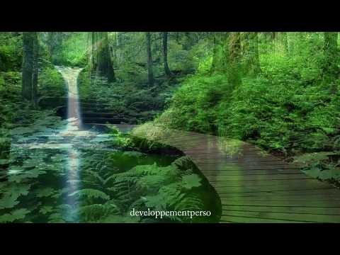 Musique de relaxation profonde pour se détendre, se calmer