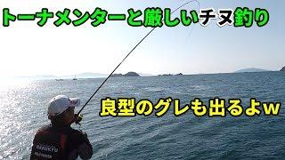 トーナメンターとチヌ釣りをする thumbnail
