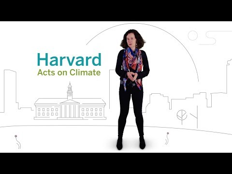 Why Harvard is committing to Fossil-Fuel Free