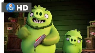 The Angry Birds Movie Hindi (04/14) Piggs Arrive Scene MovieClips