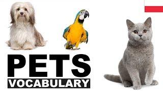 Angielskie słówka w obrazkach - Zwierzęta domowe (Pets)