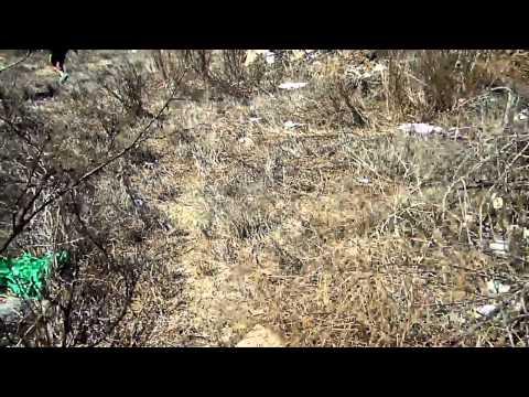 Garbage in Alepohori, Greece 1.MP4