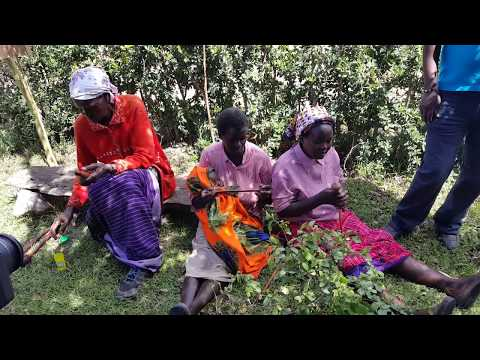 WANDERLUST ASH TRAVELS | Kenya, Africa