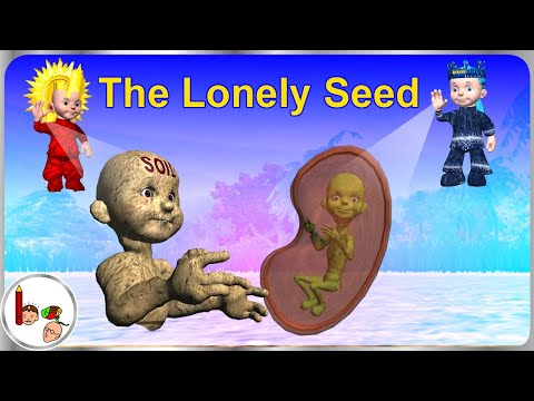 Story on how plant grows from seed - The Lonely Seed - English