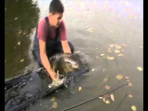 La pêche dété de lombre sur bajkale