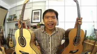 GTGuitarshop guitar review - Thuận Guitar Snow Flower - Noel 2016