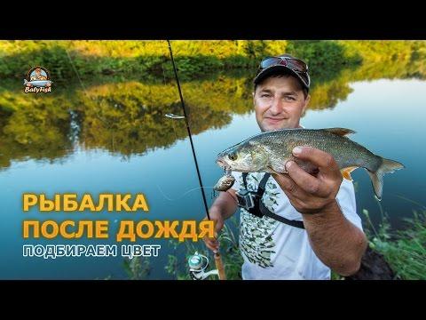 Видео рыбалка после дождя
