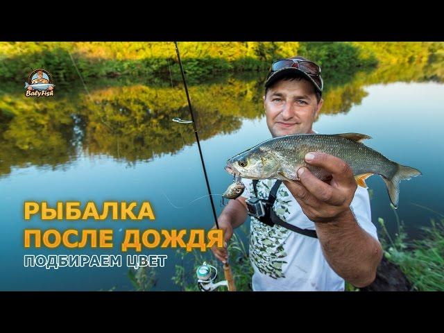 рыбалка после дождя на карася