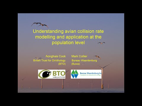 WREN Webinar #3: Understanding Avian Collision Rate Modeling at Land-Based and Offshore Windfarms