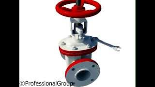 Техническое обслуживание и ремонт запорной арматуры(Обучающие анимационные 3D-видеоролики. Подробнее можно ознакомиться на сайте http://www.professionalgroup.ru., 2013-06-05T07:36:19.000Z)