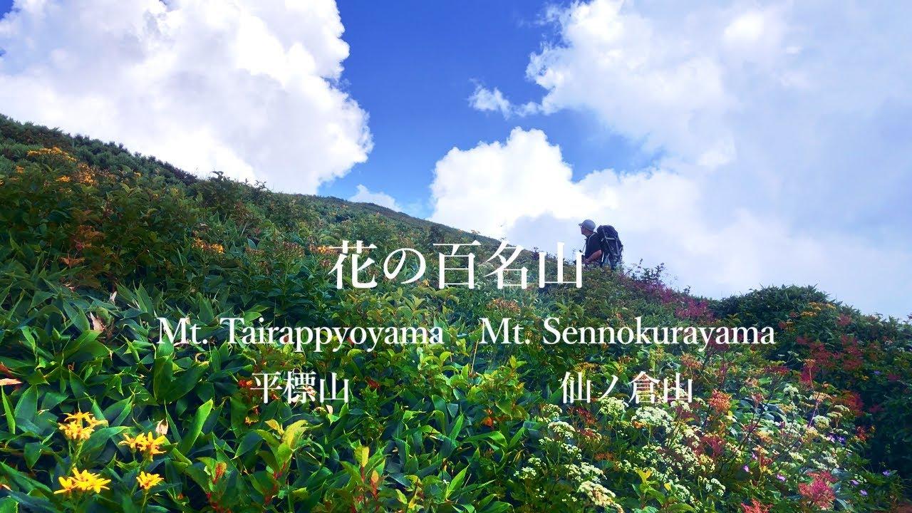 初心者おすすめ入門登山の平標山&仙ノ倉山コースは実はきつかった