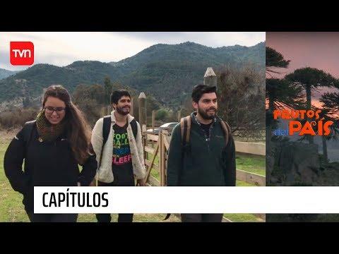 Lolol | Frutos Del País