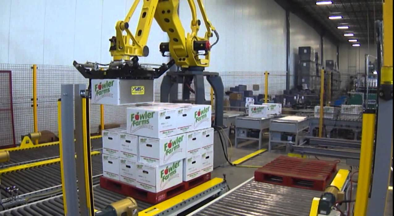 Arpac S Robotic Conventional Case Palletizer Youtube