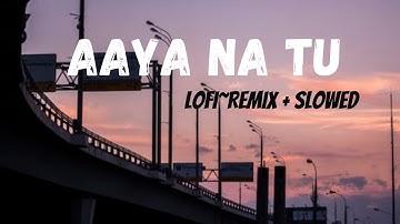 Aaya Na Tu [Lofi~ remix]  - Arjun Kanungo, Momina Mustehsan | Music Lovers | [Slowed & Reverb]