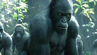 Ape Legend - Małpy Tugeder STRONG