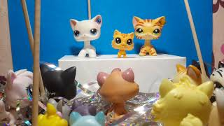 Коты Воители в LPS 1 серия 1 сезон