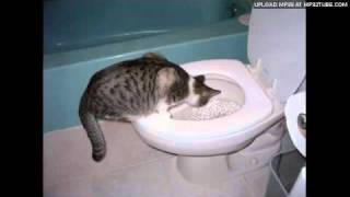 Stuart McLean - Toilet Training The Cat Part 1