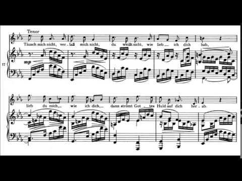 Brahms - Zigeunerlieder Op. 103 (1888)