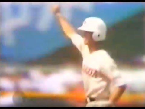 1982年の野球