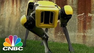 Boston Dynamics' SpotMini Robot Has A New Trick: It Can Now Open Doors | CNBC