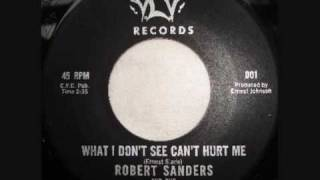Robert Sanders and The Entertainers - What I Don