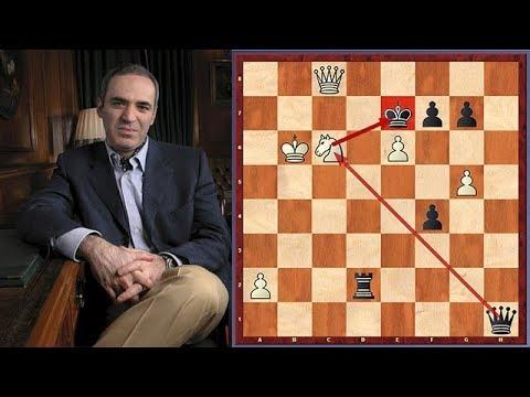Kasparov Is Shocked! A Dramatic Turnaround In Kasparov vs. Navara Encounter