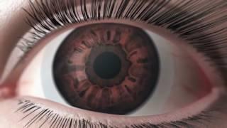 Однодневные контактные линзы Biotrue ONEday от Bausch+Lomb(, 2016-05-11T10:28:11.000Z)