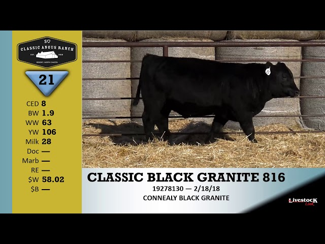 Classic Angus Ranch Lot 21