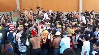 Harlem Shake - Liceo De Aplicacion + Bonus
